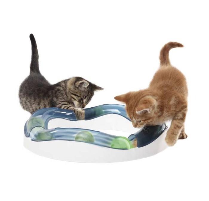 Cat-it Design Senses Speed Circuit