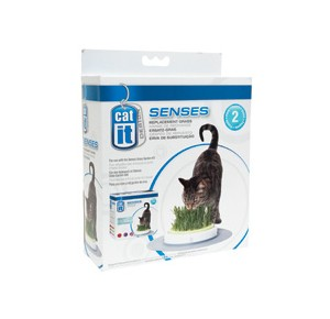 Cat-it Design Senses Grass Garden Kit refill