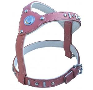Doxtasy Princess Knight harness