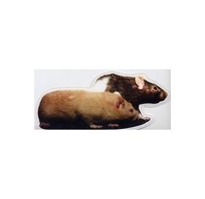 Rattensticker 2 ratten links kijkend
