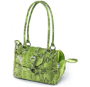 Chrome Bones Python Print Carrier Glossy Green