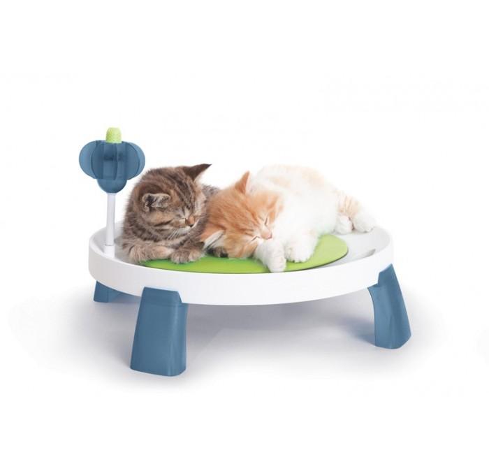 Cat-it Design Senses  Comfort Zone