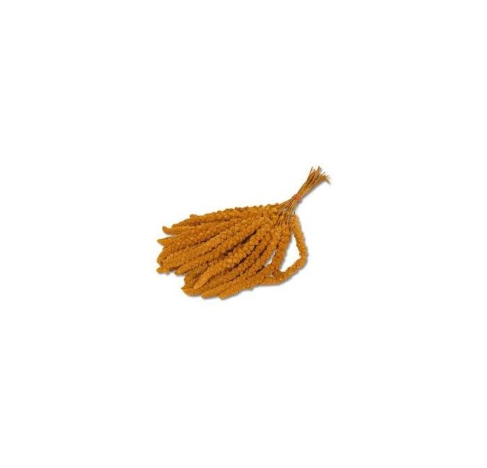 Millet 150 gram