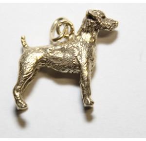 Charm Gilt Parson Jack Russel Terrier shorthair