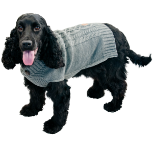 Jack & Vanilla Dogwalk Pull grijs
