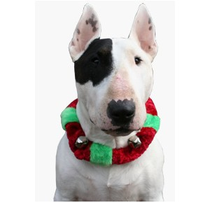 Doxtasy Jingle Collar Red/Green X- Large