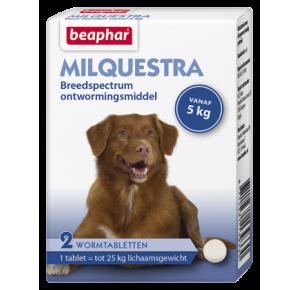Milquestra wormtabletten hond 2 tabletten