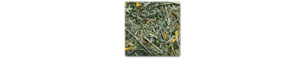 Herbs & dried grass